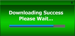 Bild med texten Downloading success Please wait